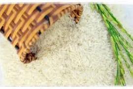 Hạt Gạo Mùa Chay